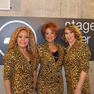 The Three Degrees (Freddi Poole, Valerie Holiday, Helen Scott) @bluesandsoul.com