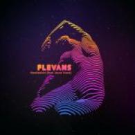 Flevans 1